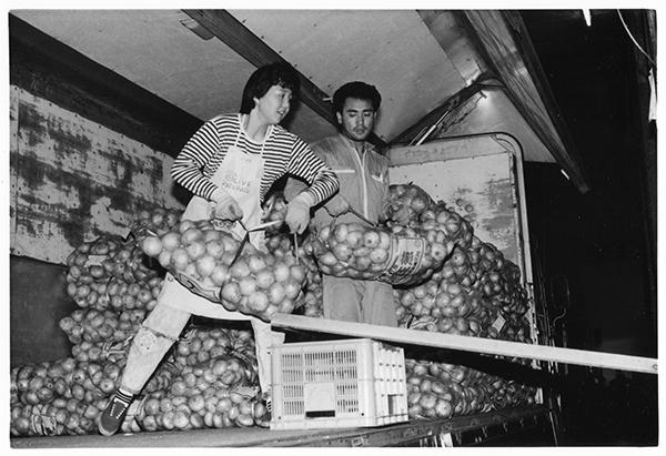 浜松の玉ねぎをおろす夫婦。「今は玉ねぎ、夏は長野のレタス。とんぼで帰って、あしたもまた、市場回り」といい、女性で20キロのネットを数百もおろすのはスゴイ